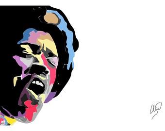 Jimi Hendrix - Canvas - 20x30