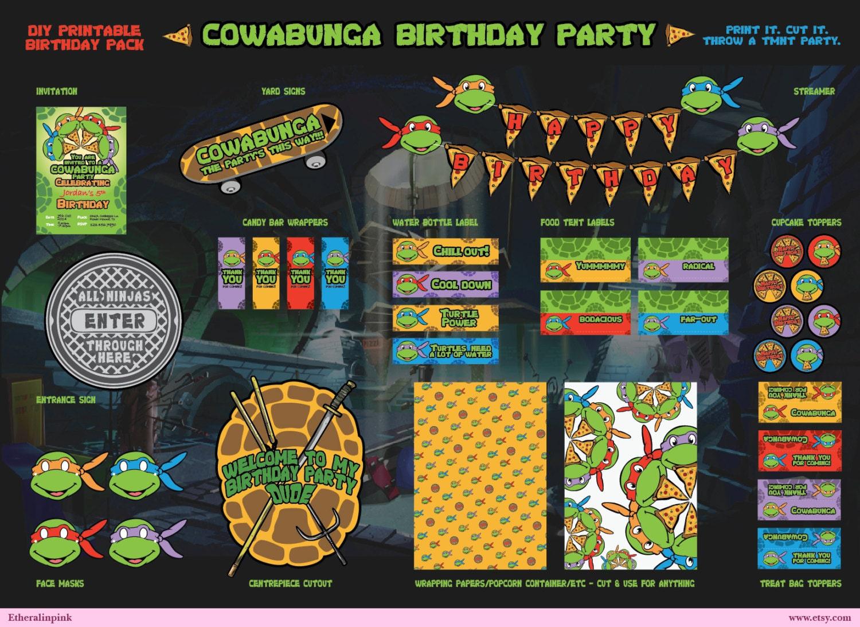Teenage Mutant Ninja Turtles TMNT Printable Birthday Party