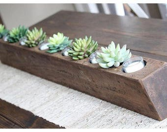 12 Hole Sugar Mold WITH 6 Glass Votives and Candles and 6 Succulents!