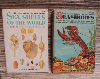 Vintage Sea Shells & Seashores Golden Nature Guides 1955 and 1962