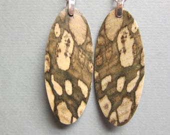 Unique patterned Exotic Wood Spalted Hackberry Long Oval dangle ExoticwoodJewelryAnd
