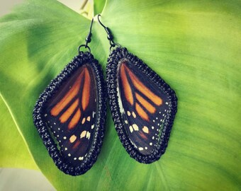 Real Butterfly Wings Earrings, Natural Butterfly Earrings, Natural Wings Earrings, Boho Earrings Creative Design Unique Gift Original Design