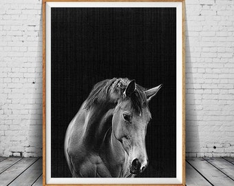 Black And White Digital Photo Art, Horse Print, Horse Wall Art, Horse Photo, Horse Photography, Modern Minimal Decor, Wilderness Art Photo