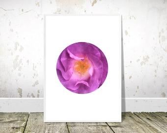 Purple Flower Print, PRINTABLE Art, Botanical Print, Photography Print, Floral Art, Minimalist Decor, Wall Art, Home Decor, Floral Print