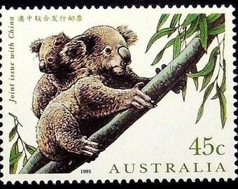 Koala bear, Australia -Handmade Framed Postage Stamp Art 21584AM