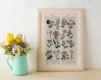 Wild flowers collection Print on Vintage Dictionary Book page, Wild flora art, Wall art naturalist illustration BFL215