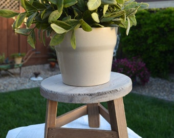 Milking Stool / Garden Plant Stand / Farmhouse Style Decorative Step Stool / Rustic Home Decor / Wood Stool Riser / Off-White Home Accent
