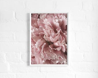 Pink Peony A3 Art Print, Pale Pink Floral Poster, Blush Pink, Large Flower Print, Botanical Art, Wall Decor, Giftability, Mothers Day