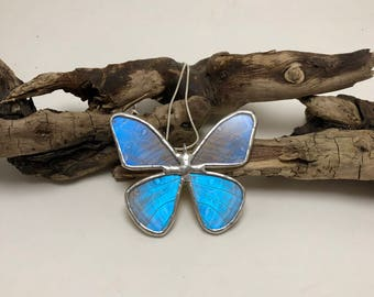 Real Butterfly Necklace, butterfly,insect jewelry,handmade, Blue Morpho Pendant,handmade butterfly pendant, butterly wing, morpho sulkowskyi