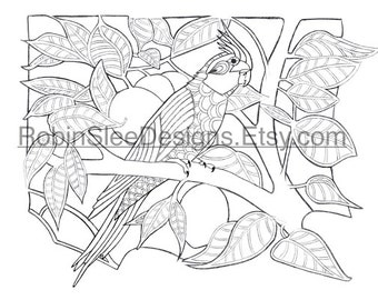 Cockatiel Colouring page. Instant download. PDF and JPEG files included. Adult colouring page. Print color and frame. Wall art. Home decor.