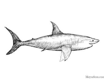 Shark - Art Print