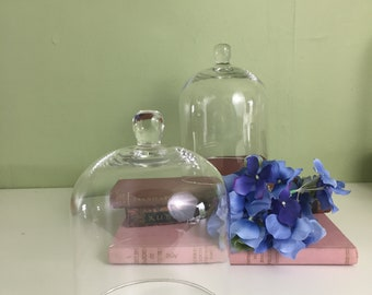 Clear Glass Cloche Bell Jar with Knob 5 Inch