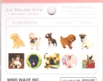 Dog Stickers - Photo Stickers - 70 Flake Seals - La Dolce Vita Mind Wave Stickers - Reference F1525F1585F1893F2348