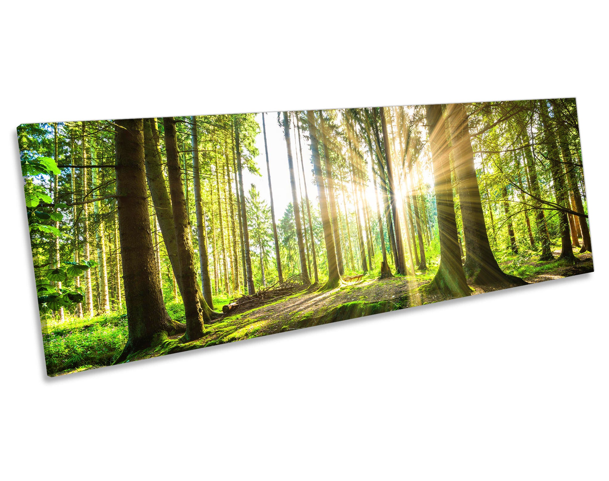 Green Countryside Forest Print CANVAS WALL ART Panoramic