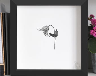 Clematis Flower Print