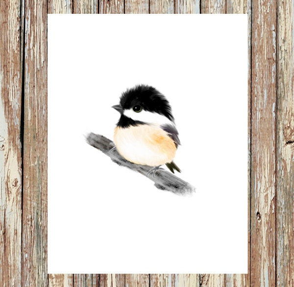 super decor bird tech l art country french love print cottage wall