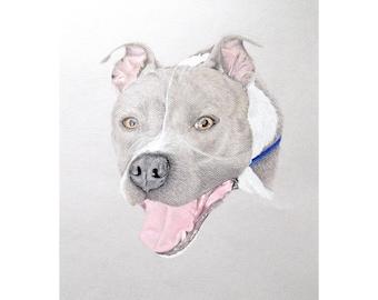 Custom Dog Art, Dog Drawing, Dog Portrait Custom, Custom Pet Drawing, Dog Art Custom, Custom Pet Art, Custom Dog Drawing, Pet Memorial Art