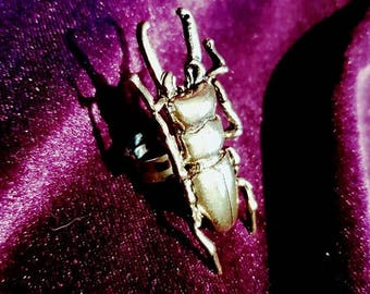 Beetle Ring - insect bug gothic witch pagan beelzebub