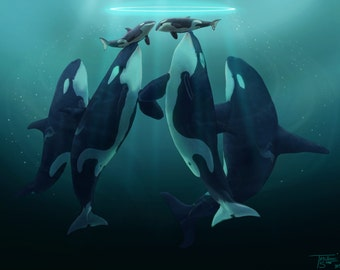 "Orca art print - ""4 Becomes 6"" 8x10 print"