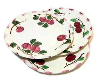 Three Blue Ridge Pottery Autumn Apple Dinner Plates Southern Potteries