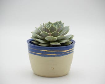 Ceramic blue and gold planter, Indoor planter, Ceramic plant pots , Housewarming gift, White ceramic planters, Handmade pottery