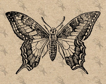 Butterfly Vintage image Instant Download Digital printable clipart graphic - scrapbooking, burlap, kraft, mail art etc HQ 300dpi