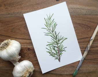 Original Herb Watercolor Painting- Rosemary