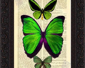 Vibrant Green Butterflies Print on vintage upcycled dictionary page