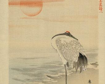 Japanese Art. Fine Art Reproduction. A Heron Sleeping on the Seashore, c. 1890: Fine Art Print