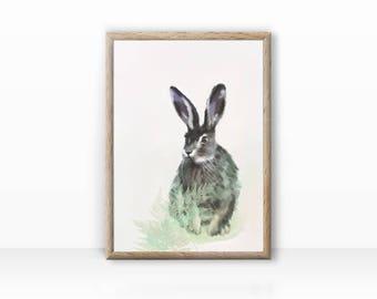 Wild rabbit illustration, animal portrait, print