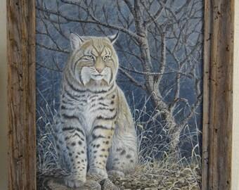 Original Bobcat Painting