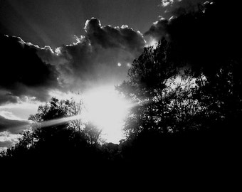 Brightness After Dawn, Black and White Sunrise, Clouds, Sky, Nature Photography, Original Print, Good Morning, Through Trees, Spring, 8x10
