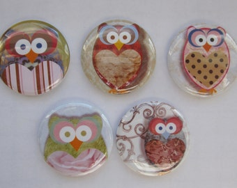 Magnets set of 5 button  mini 1 inch or 1.25 inch owl magnets you choose the size