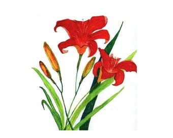 Watercolor Lilies , Original  Art  Note  Cards