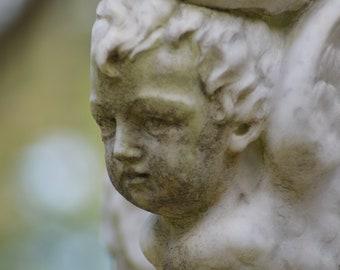 Bonaventure Cemetery photo