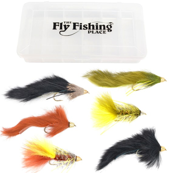 Fly Fishing Gift Set - 6 Cone Head Streamer Trout and Bass Fly Fishing Flies with Fly Box - 6 Patterns - Hook Size 4