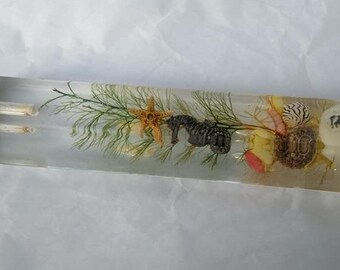 Vintage lucite letter opener aquatic sea life Hawaii floating scene souvenir