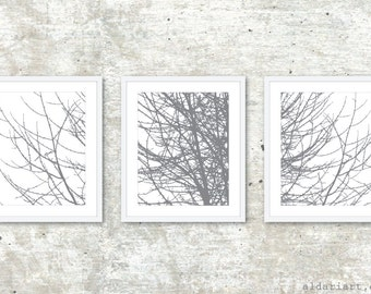 Modern Tree Triptych / Tree Branches Prints / Set of 3 Prints / Winter Tree Wall Art / 5x7 or 8x10 / Slate Grey / Aldari Art