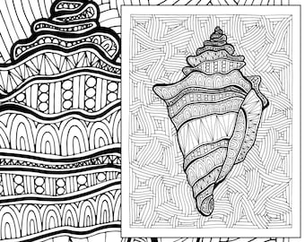 zentangle shell adult coloring page adult coloring sheet colouring sheet adult colouring book