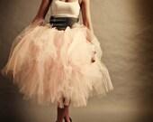 Shabby Chic Tulle Skirt A...