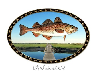 The Sandwich Cod
