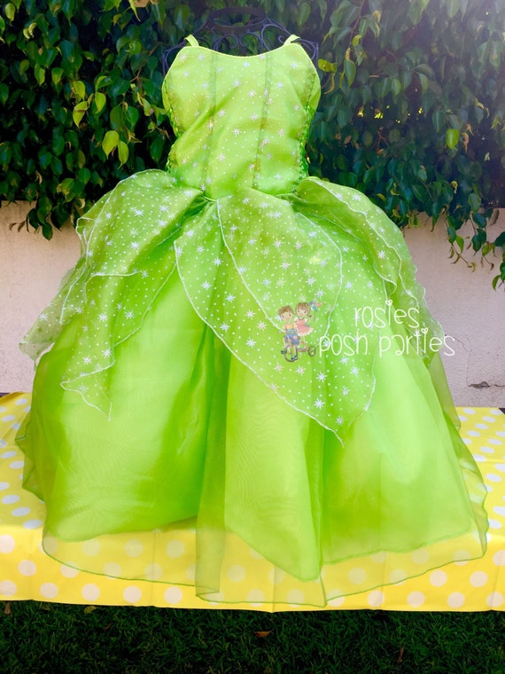 Tinkerbell Fairy dress for Birthday costume or Photo shoot