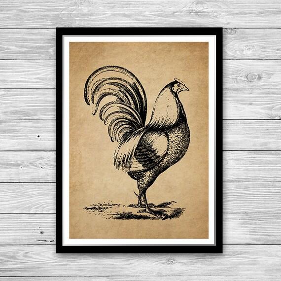 Bauernhaus Dekor Vogel Wandkunst Hahn Huhn Hahn Poster Vintage