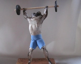 taxidermy frog dumbbell taxidermy frog curiosity oditties