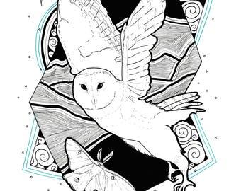 Owl Illustration Print