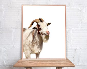 Goat Wall Art / Goat Home Decor / Goat Print / Goat / Goat Art /