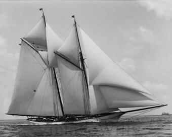 old photograph, vintage schooner, sailboat race, 1900's, vintage photo, home decor, instant download, black and white, digital download,
