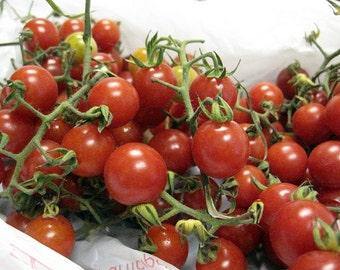 Matt's Wild Cherry Tomato seeds