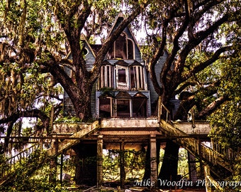 Brooksville Treehouse Photograph Photo DIGITAL HDR Picture Abandoned Contrast History Historical Deserted Tree Fine Art Poster Wall Art cool