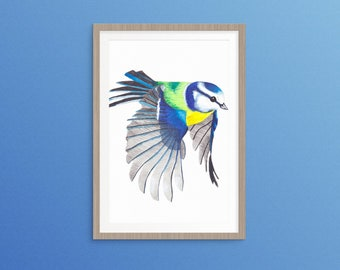 "A Watercolour Blue Tit in Flight Original Painting 12"" x 10"""